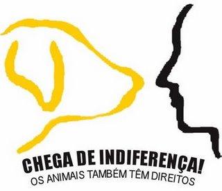 Antes de descer a lenha nos defensores dos Direitos Animais, pare e pense: por que eles defendem direitos para os animais não humanos?