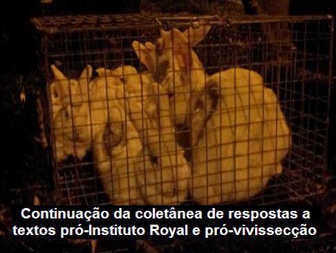 royal-coelhos
