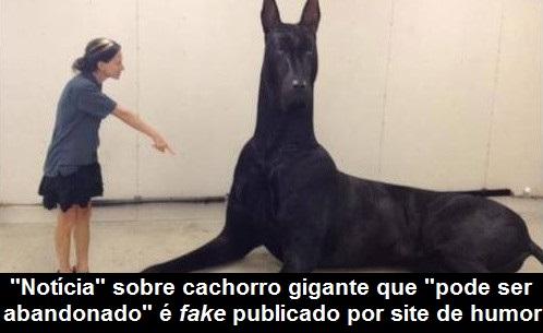 cachorro-gigante-fake