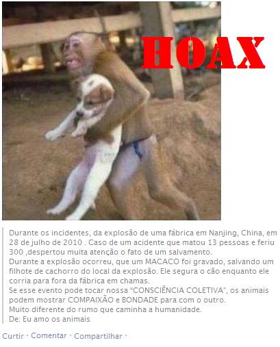 hoax-macaco-salva-filhtoe