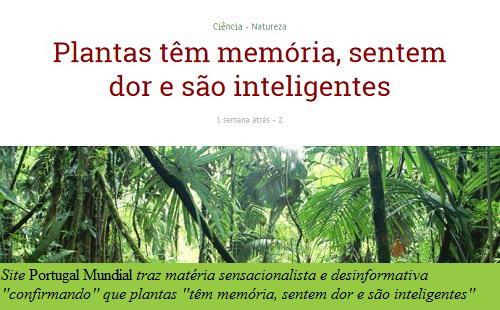 portugal-mundial-plantas-sencientes