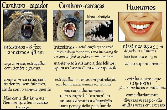 Exemplo do argumento biológico