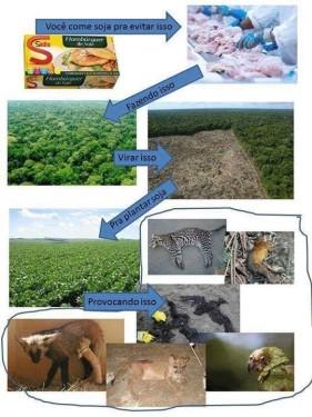 Imagem prodanista* que critica o consumo de soja pelos veganos e vegetarianos. Clique na imagem para vê-la em tamanho completo