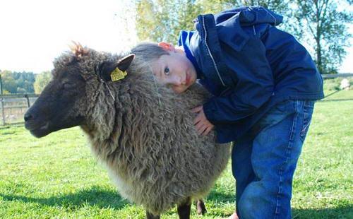 Você não precisa dedicar aquele amor de abraçar e querer viver junto para ser contra a exploração animal. Basta respeitá-los e aceitar que tenham direitos fundamentais