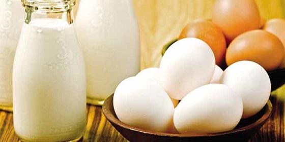 Leite e ovos: por que não consumi-los em nenhuma hipótese