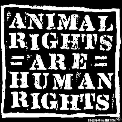 Direitos Animais são Direitos Humanos