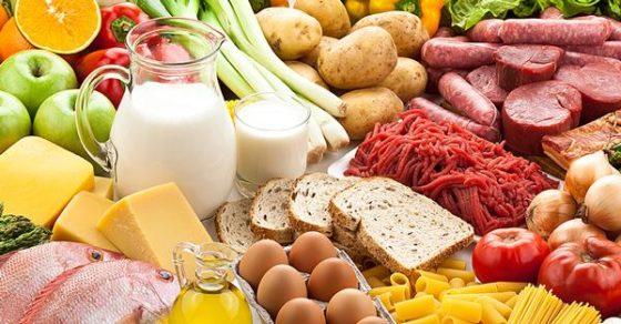 Alimentos vegetais e produtos animais