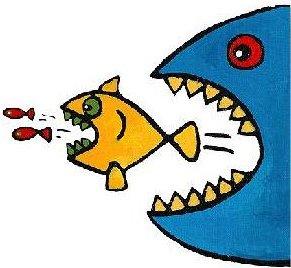 peixes, cadeia alimentar