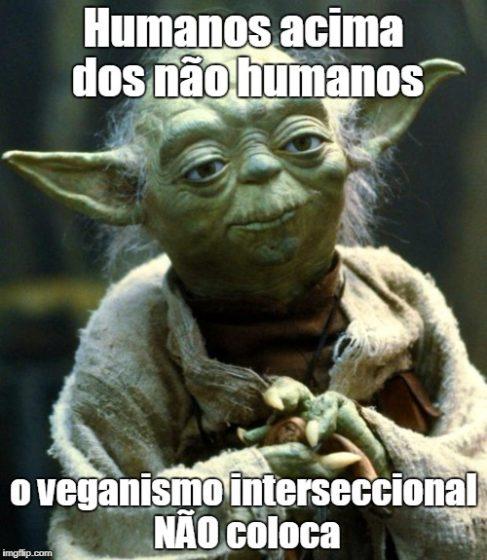 Yoda vegano interseccional