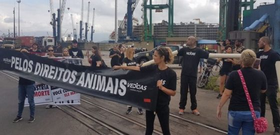 Protesto do VEDDAS em Santos