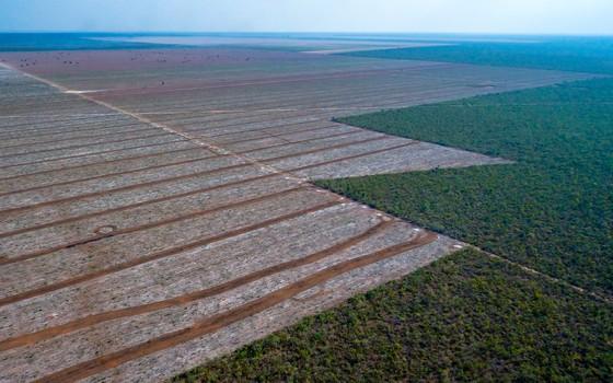 Desmatamento do cerrado, com os limites da mata em pé em linhas poligonais