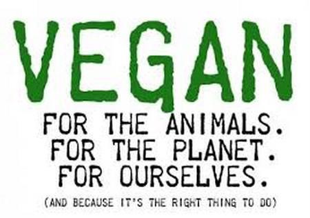 Vegan: pelos animais, pelo planeta, por nós mesmos! E porque é a coisa certa a se fazer