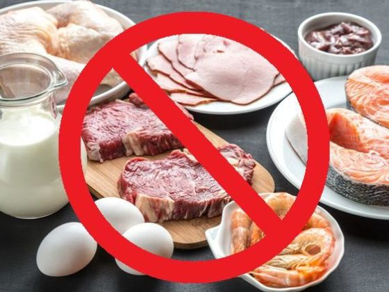 Diga não aos alimentos de origem animal