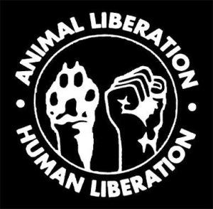 Veganismo interseccional, libertação animal e política