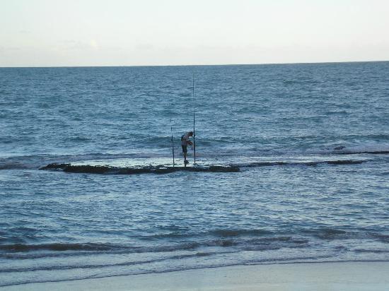 Pescador matando peixes na praia de Boa Viagem